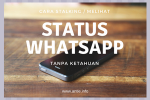 cara melihat whatsapp story tanpa ketahuan
